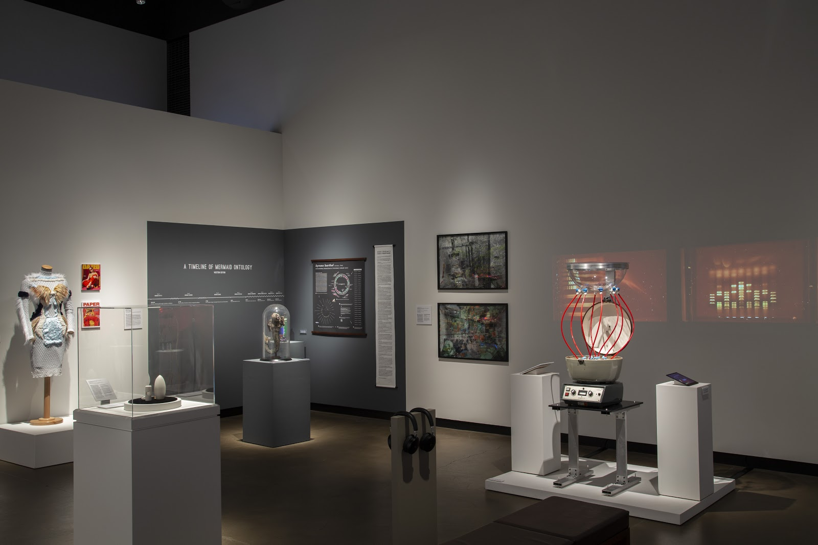 Art's Work in the Age of Biotechnology at the Gregg Museum of Art & Design in Raleigh, NC. Installation image by Matthew Gay, courtesy of the Gregg Museum of Art & Design, 2019-2020.